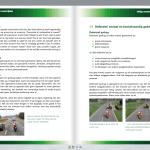 Voorbeeld Motor Theorieboek